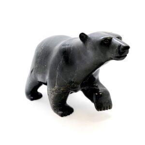 Polar Bear - Timothy Pee