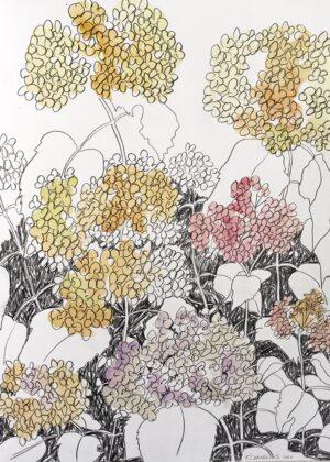 Capricious Blooms Capricious